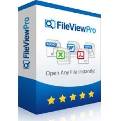 Fileviewpro Crack Registration Key