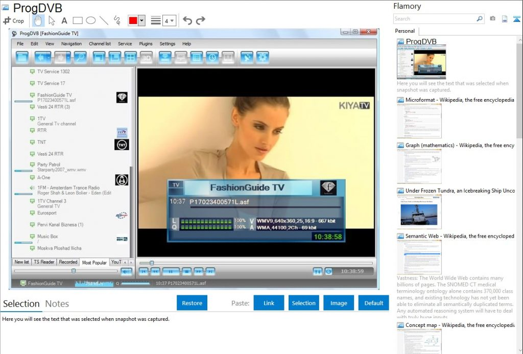 ProgDVB Professional Crack v7.38.1 Free Download 2021